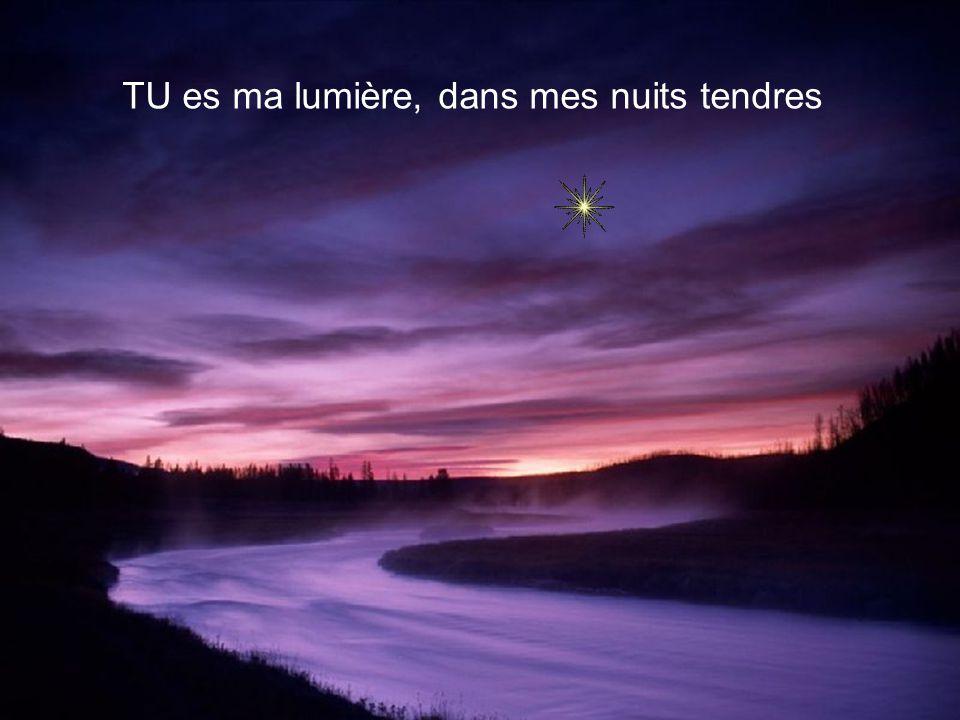 TU es ma lumière, dans mes nuits tendres
