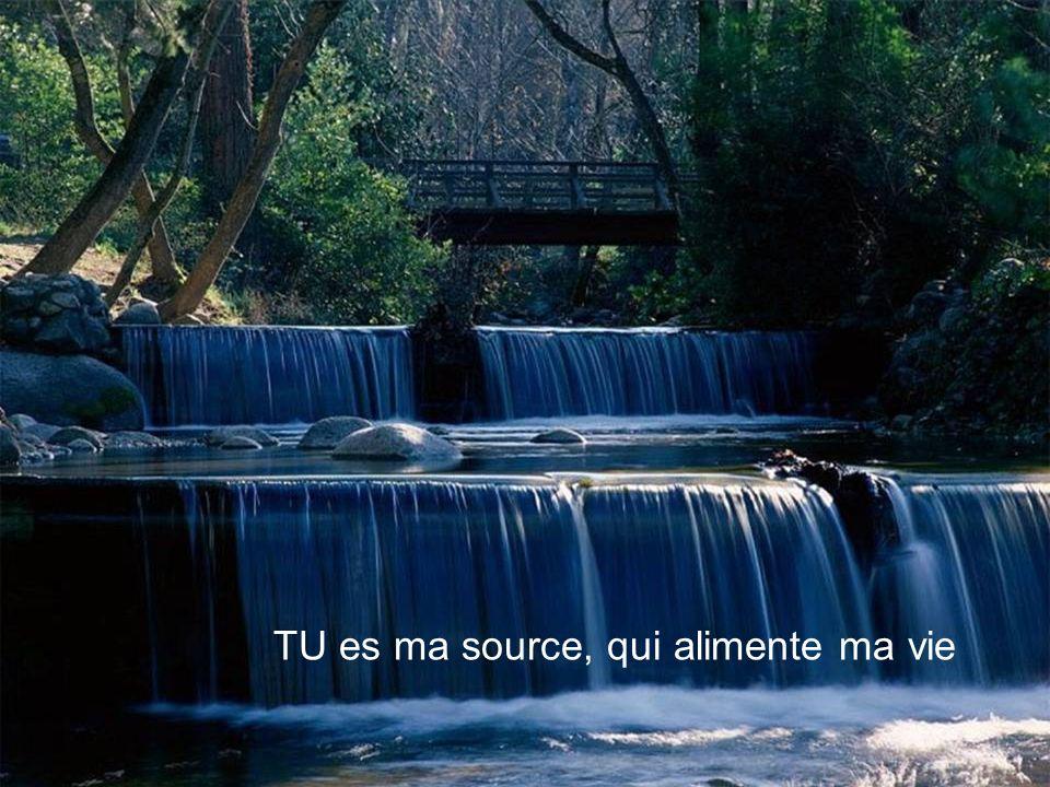 TU es ma source, qui alimente ma vie