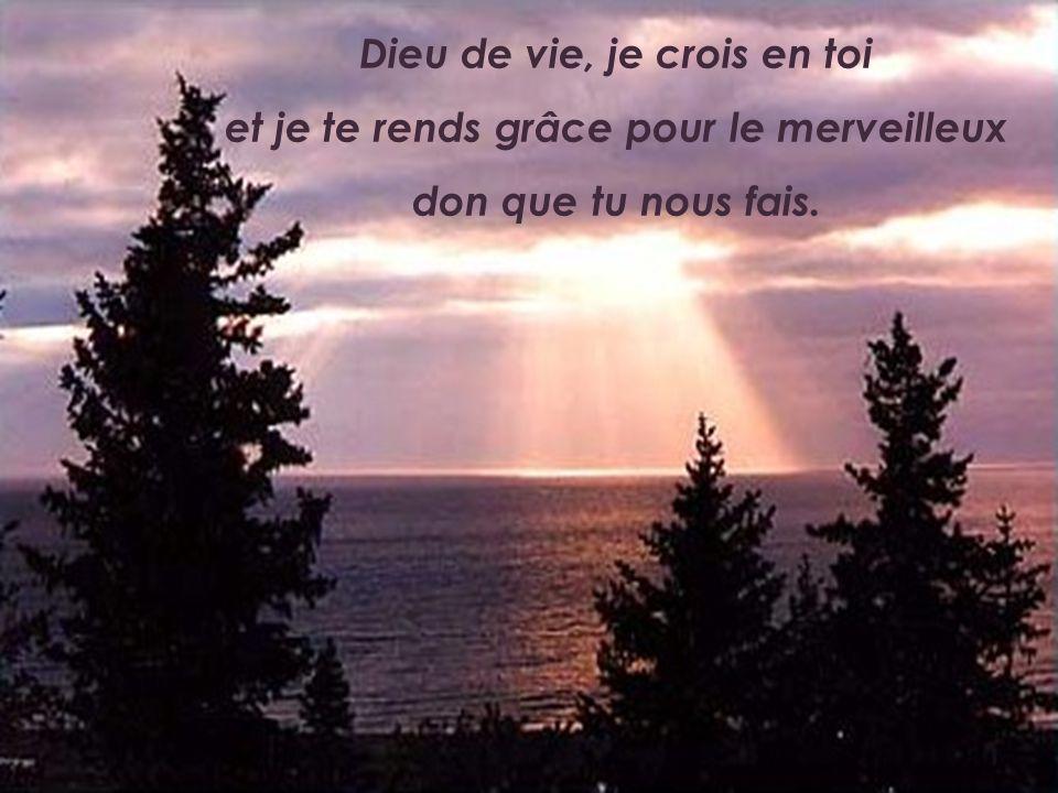 Dieu de vie, je crois en toi et je te rends grâce pour le merveilleux