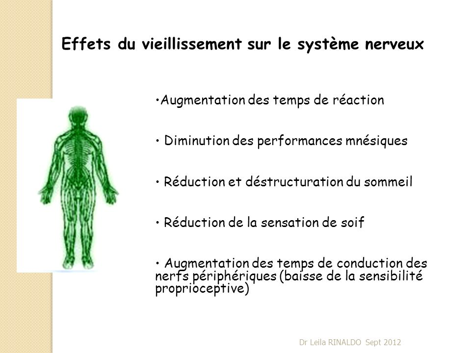 Effets du vieillissement sur le système nerveux