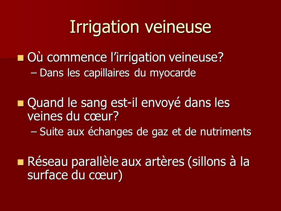 Irrigation veineuse Où commence l'irrigation veineuse