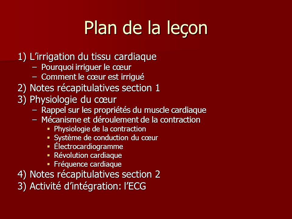Plan de la leçon 1) L'irrigation du tissu cardiaque