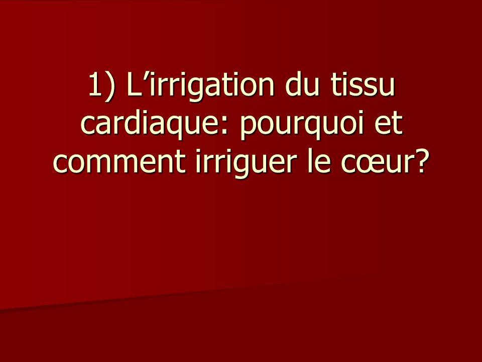 1) L'irrigation du tissu cardiaque: pourquoi et comment irriguer le cœur