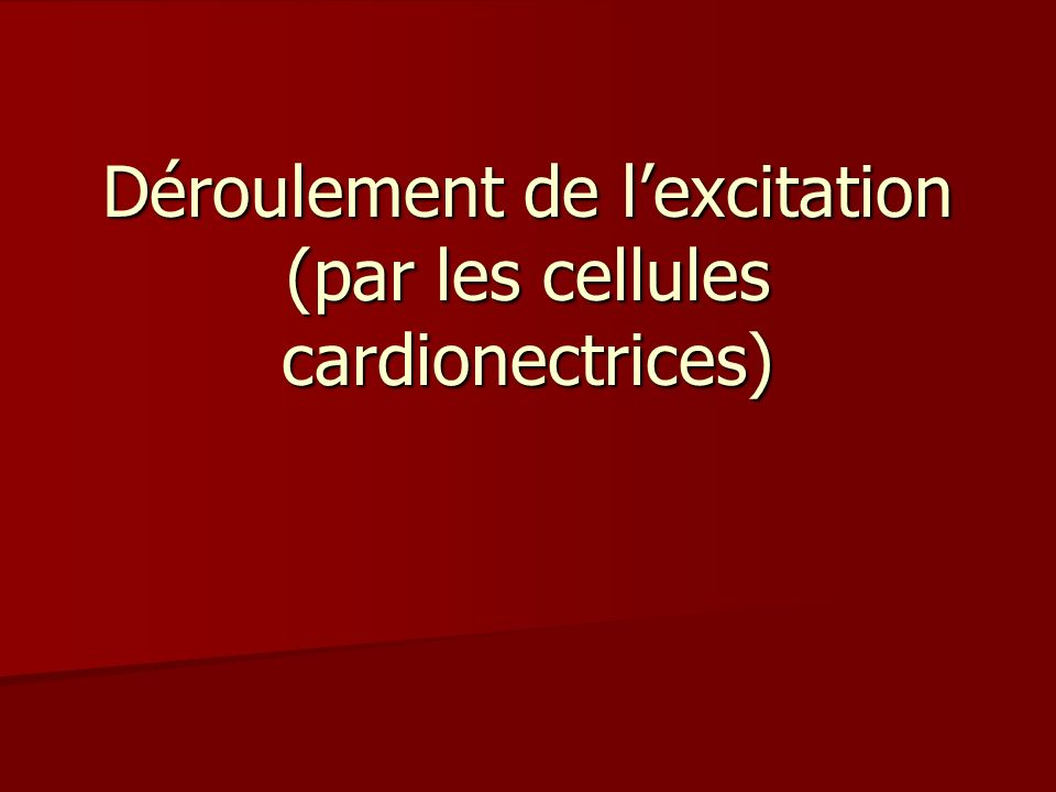 Déroulement de l'excitation (par les cellules cardionectrices)