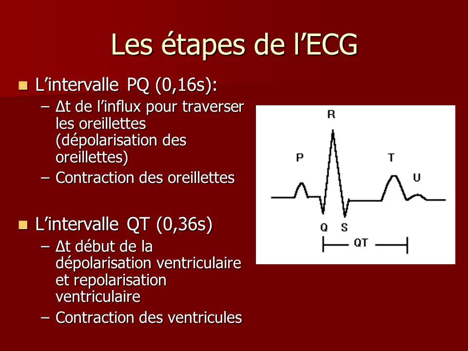 Les étapes de l'ECG L'intervalle PQ (0,16s): L'intervalle QT (0,36s)