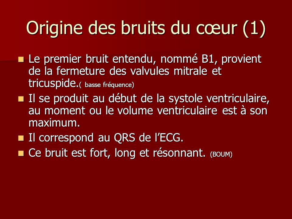 Origine des bruits du cœur (1)