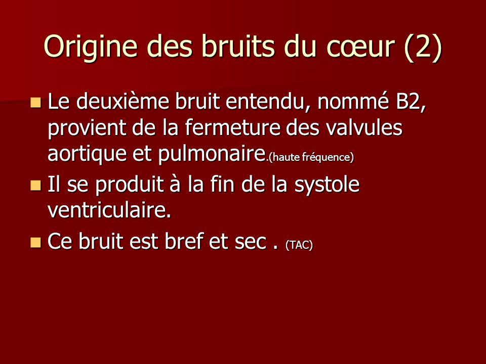 Origine des bruits du cœur (2)