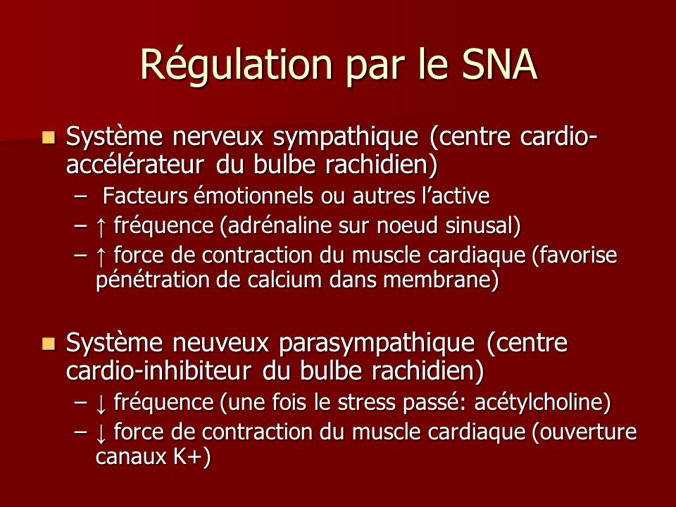 Régulation par le SNA Système nerveux sympathique (centre cardio-accélérateur du bulbe rachidien) Facteurs émotionnels ou autres l'active.