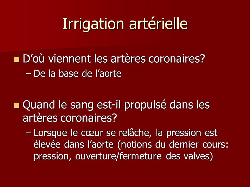 Irrigation artérielle
