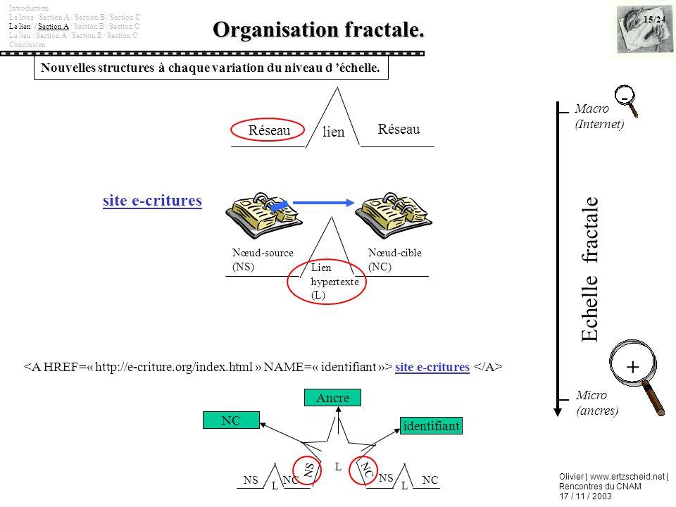 Organisation fractale.