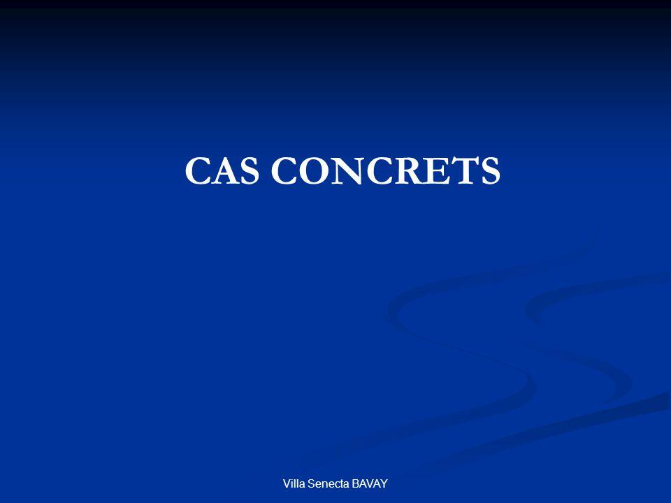 CAS CONCRETS Villa Senecta BAVAY