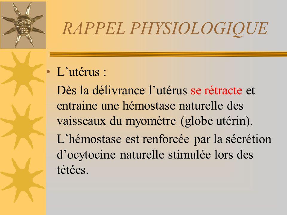 RAPPEL PHYSIOLOGIQUE L'utérus :