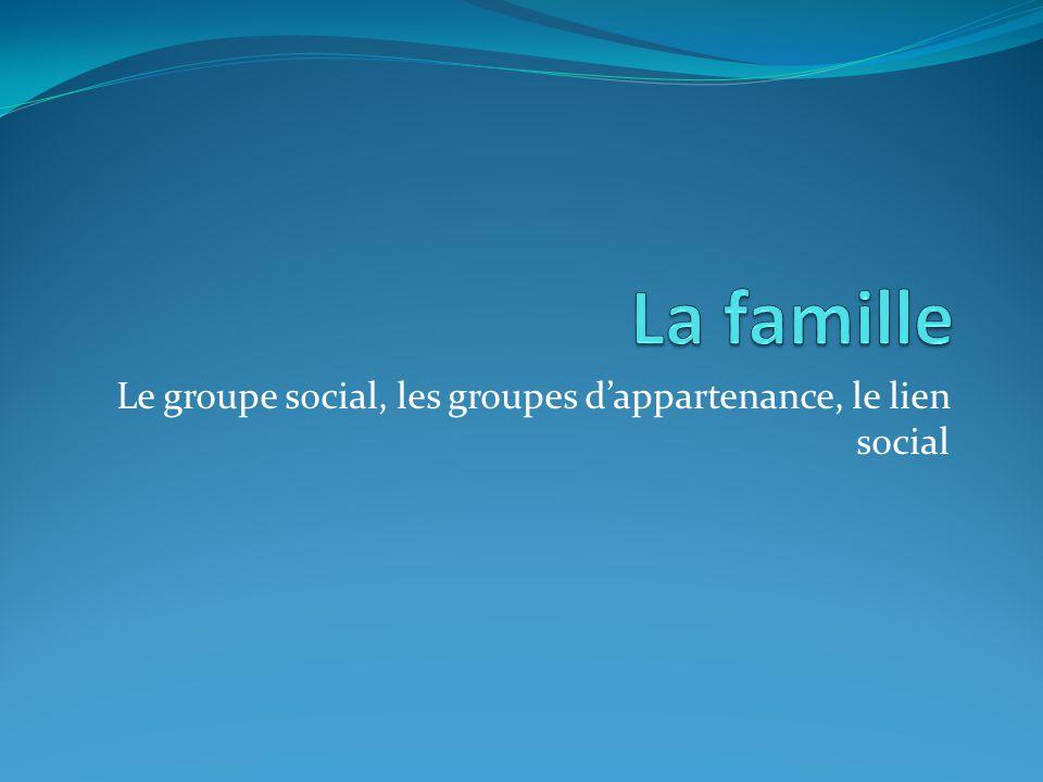 Le groupe social, les groupes d'appartenance, le lien social