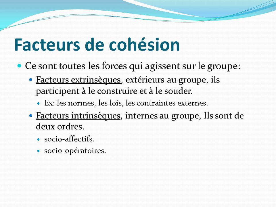 Facteurs de cohésion Ce sont toutes les forces qui agissent sur le groupe: