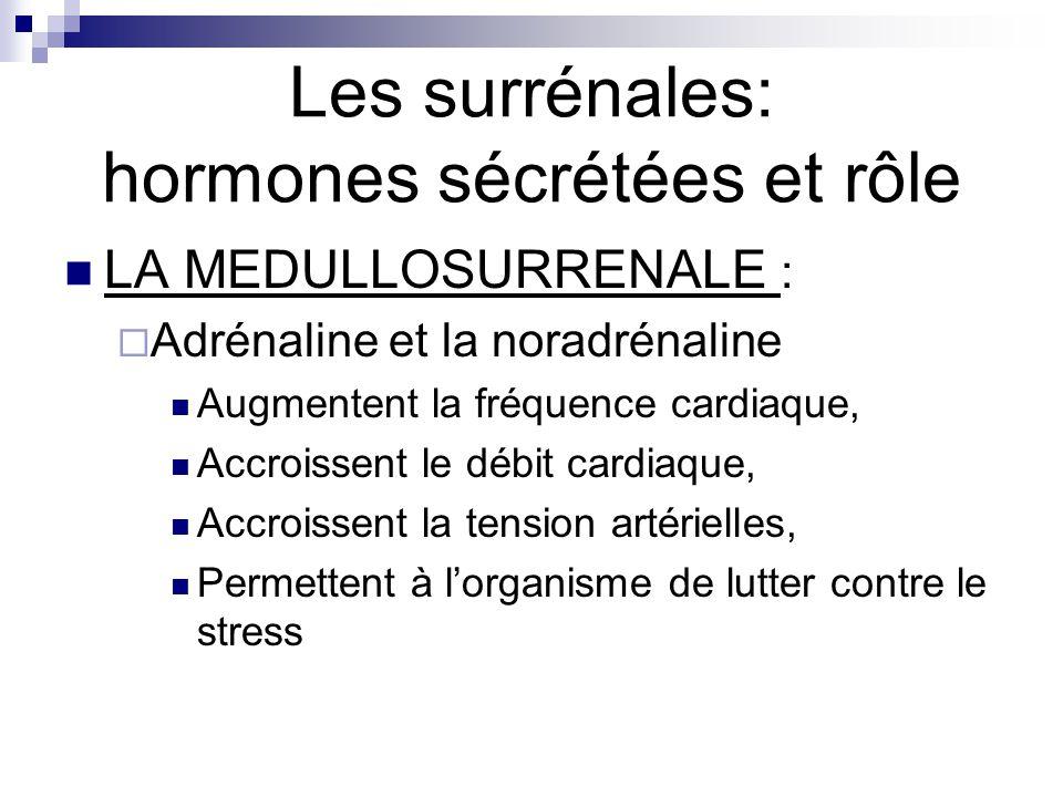 Les surrénales: hormones sécrétées et rôle