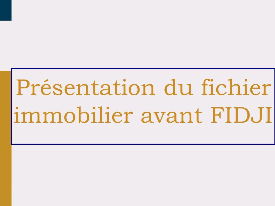Présentation du fichier immobilier avant FIDJI