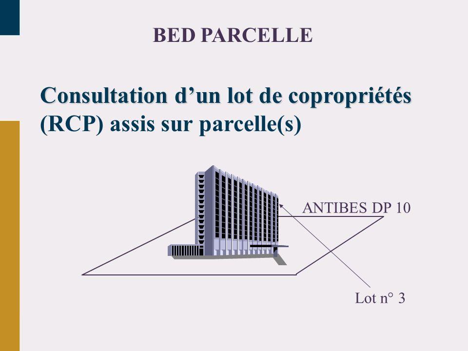 Consultation d'un lot de copropriétés (RCP) assis sur parcelle(s)