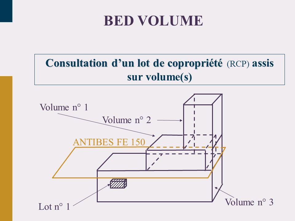 Consultation d'un lot de copropriété (RCP) assis sur volume(s)