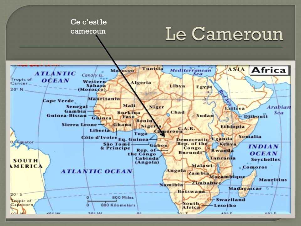 Le Cameroun Ce c'est le cameroun
