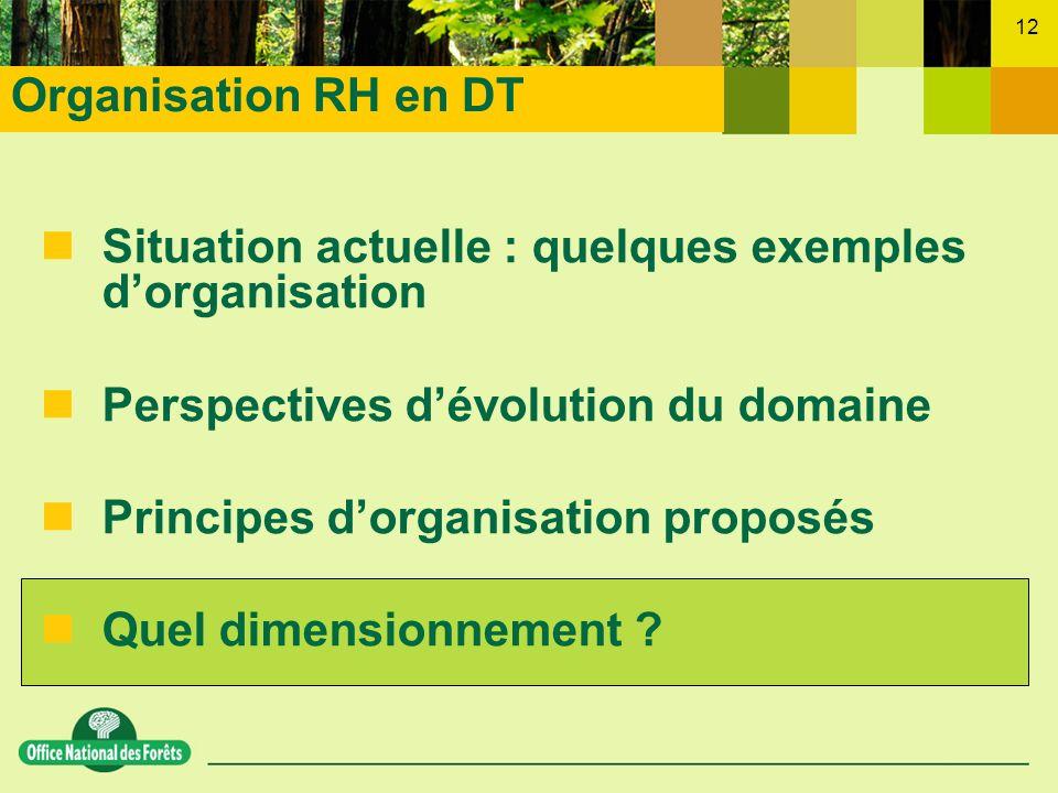 Organisation RH en DT Situation actuelle : quelques exemples d'organisation. Perspectives d'évolution du domaine.