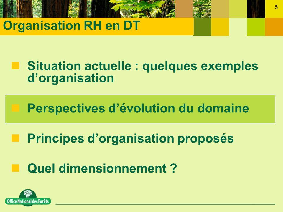 Organisation RH en DTSituation actuelle : quelques exemples d'organisation. Perspectives d'évolution du domaine.