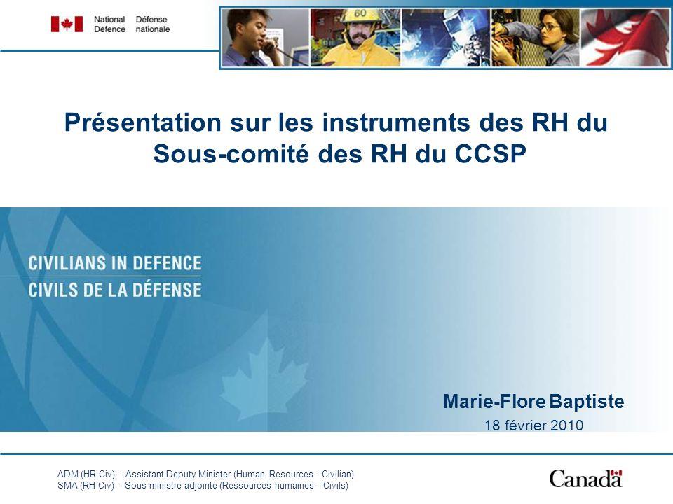 Présentation sur les instruments des RH du Sous-comité des RH du CCSP