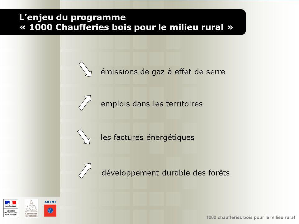 L'enjeu du programme « 1000 Chaufferies bois pour le milieu rural »