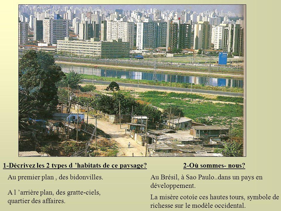 1-Décrivez les 2 types d 'habitats de ce paysage