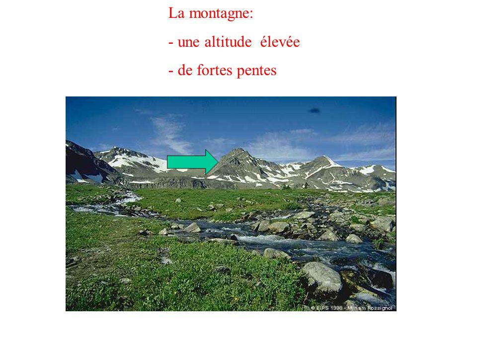 La montagne: une altitude élevée de fortes pentes