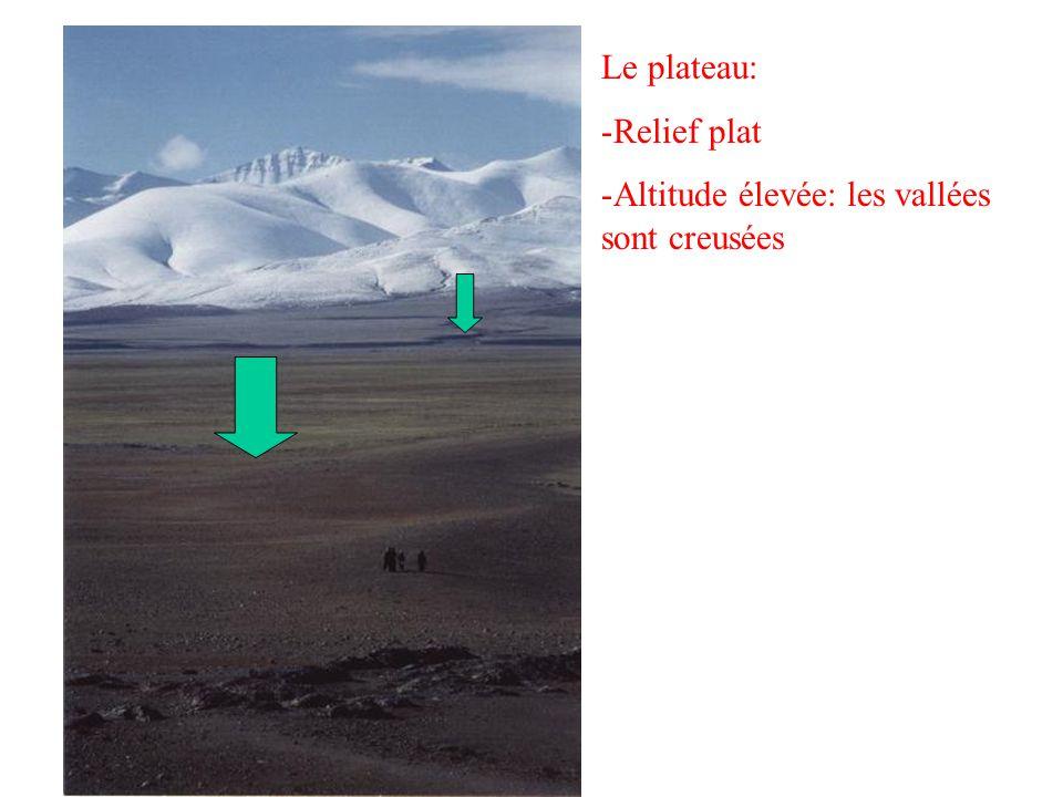 Le plateau: Relief plat Altitude élevée: les vallées sont creusées