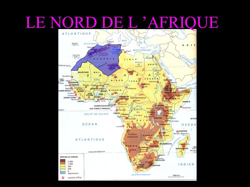 LE NORD DE L 'AFRIQUE