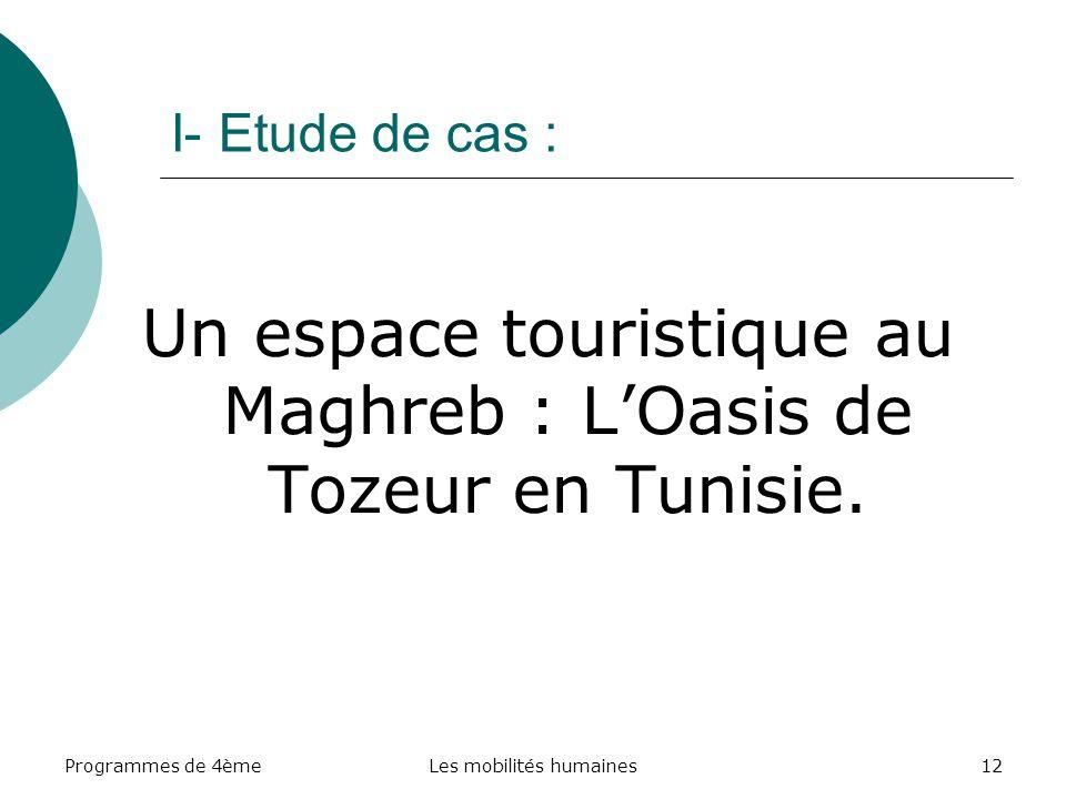 Un espace touristique au Maghreb : L'Oasis de Tozeur en Tunisie.