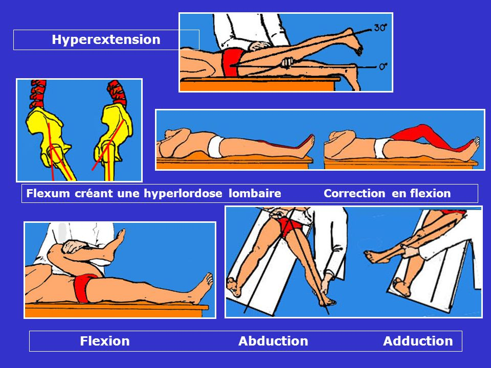 Flexion Abduction Adduction