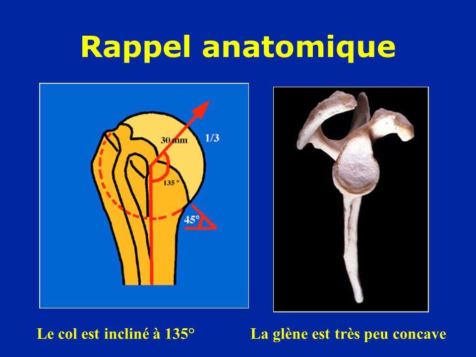 Rappel anatomique Le col est incliné à 135° La glène est très peu concave