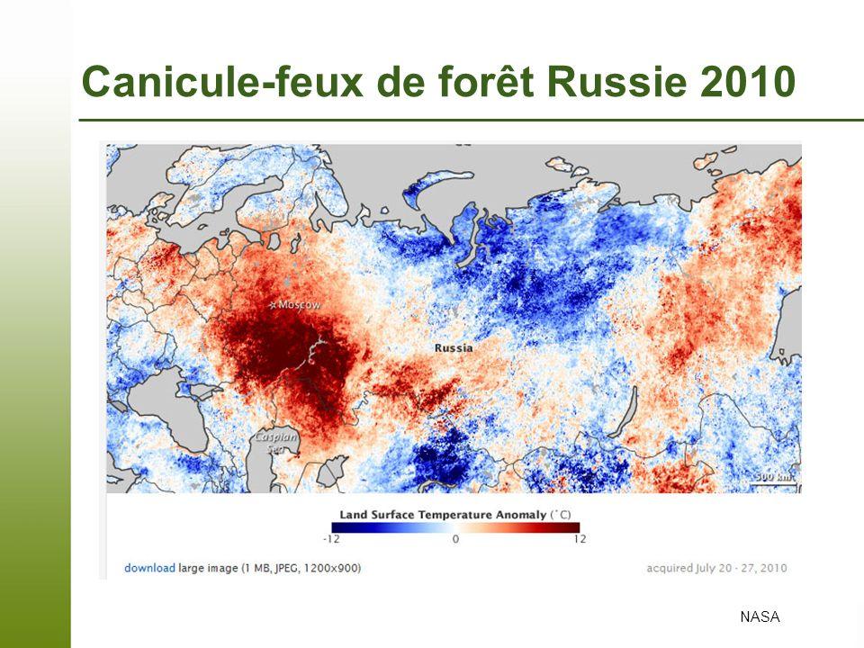 Canicule-feux de forêt Russie 2010