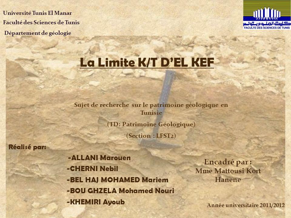La Limite K/T D'EL KEF Encadré par : -ALLANI Marouen -CHERNI Nebil