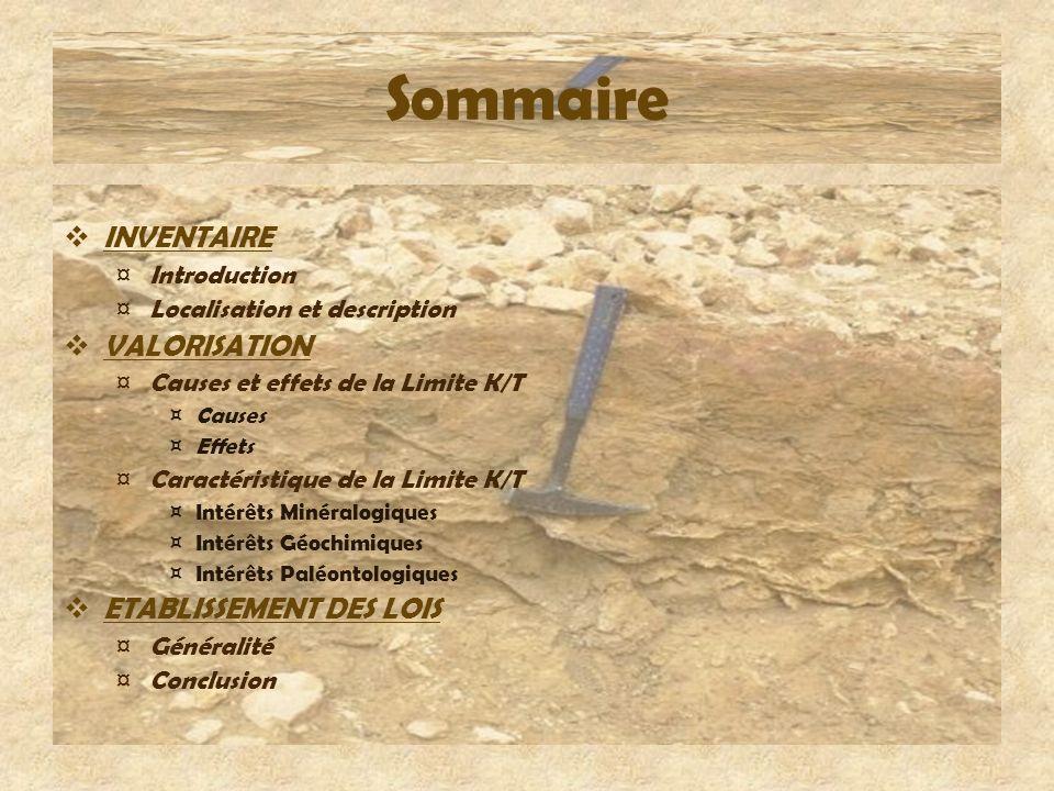 Sommaire INVENTAIRE VALORISATION ETABLISSEMENT DES LOIS Introduction