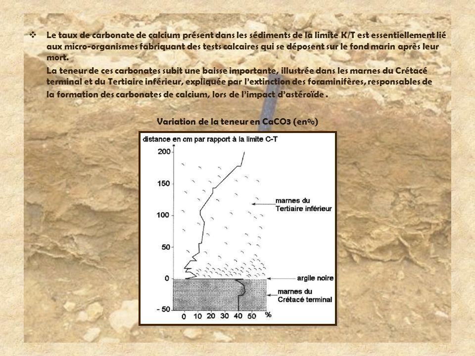 Variation de la teneur en CaCO3 (en%)