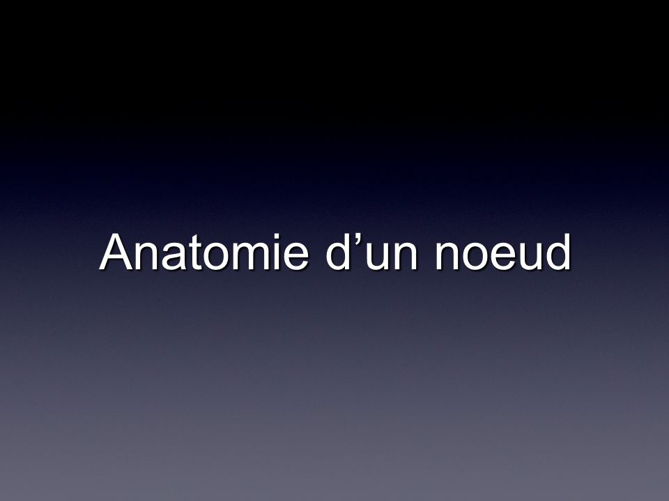 Anatomie d'un noeud