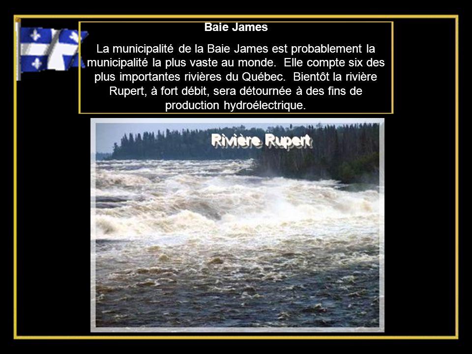 Baie James