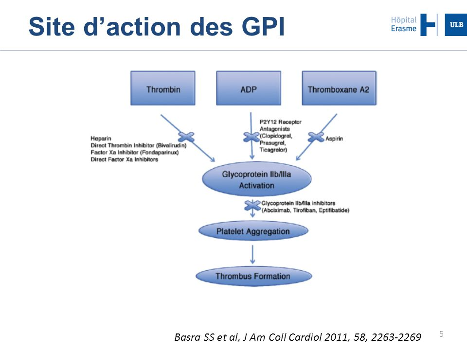Site d'action des GPI Basra SS et al, J Am Coll Cardiol 2011, 58, 2263-2269