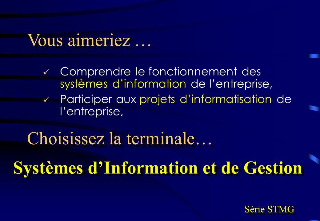 Systèmes d'Information et de Gestion