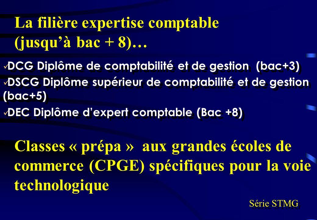 La filière expertise comptable (jusqu'à bac + 8)…