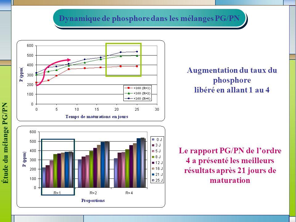 Dynamique de phosphore dans les mélanges PG/PN