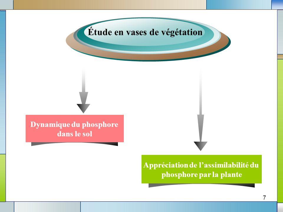 Étude en vases de végétation