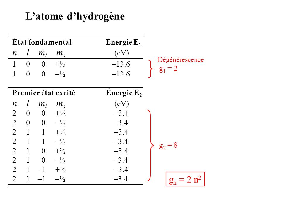 L'atome d'hydrogène n l ml ms (eV) gn = 2 n2
