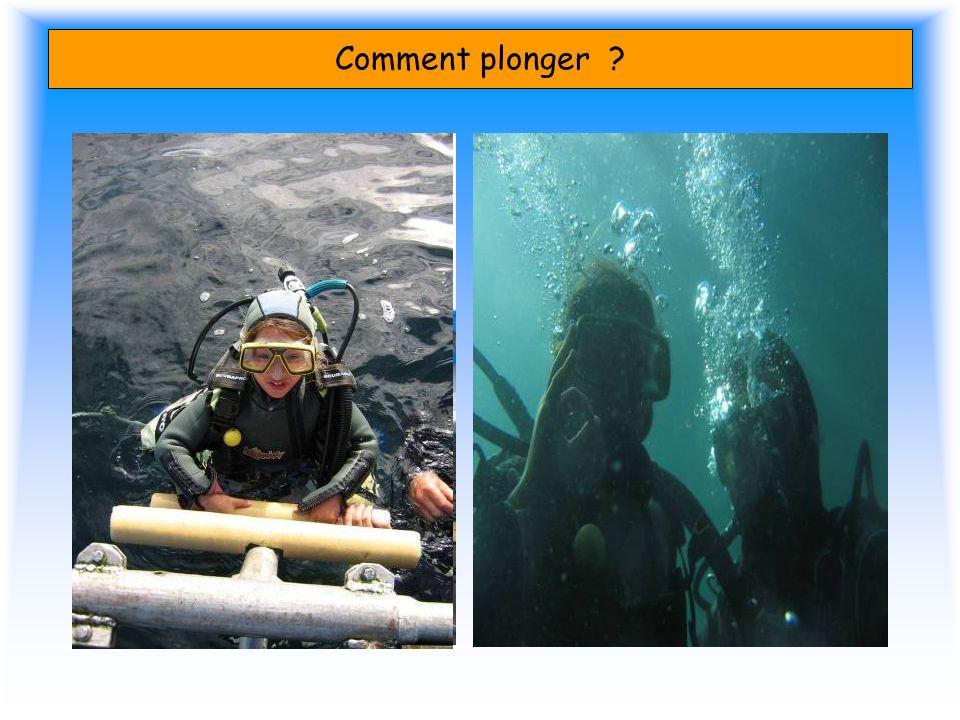 Comment plonger