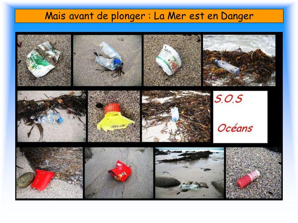 Mais avant de plonger : La Mer est en Danger