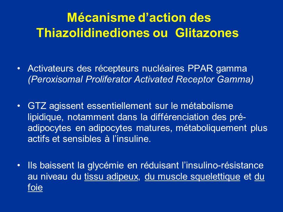 Mécanisme d'action des Thiazolidinediones ou Glitazones
