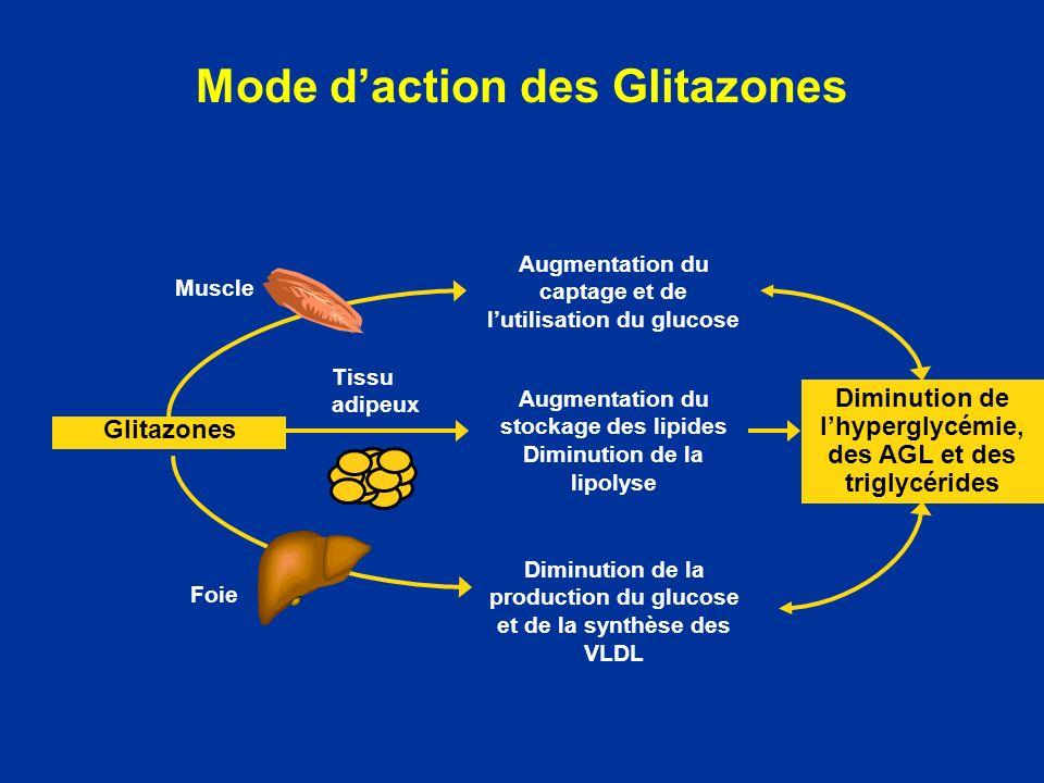 Mode d'action des Glitazones